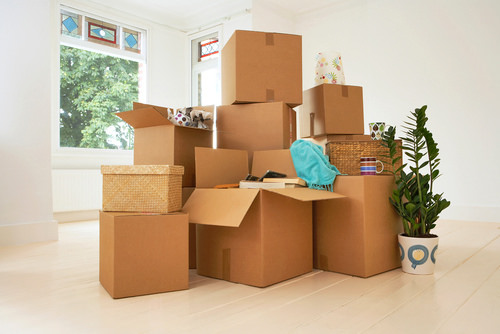 movers and packers company
